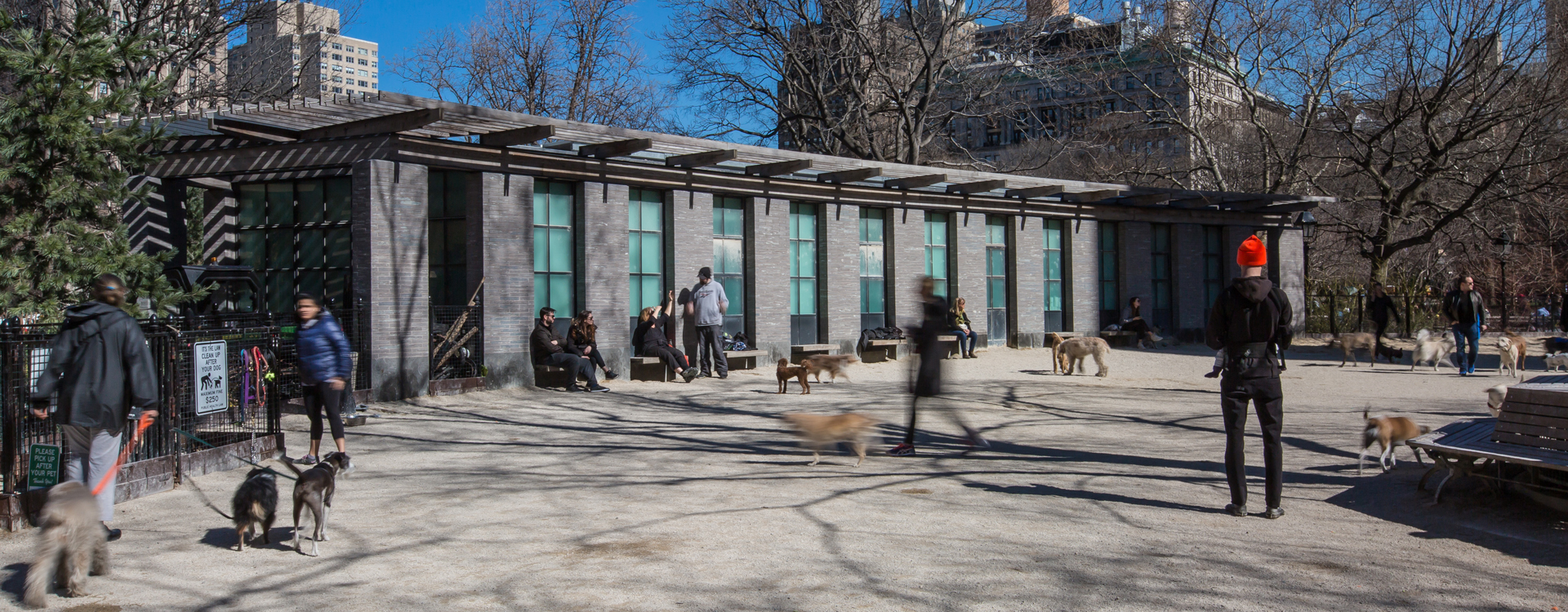 Best Parks For Dogs Nyc