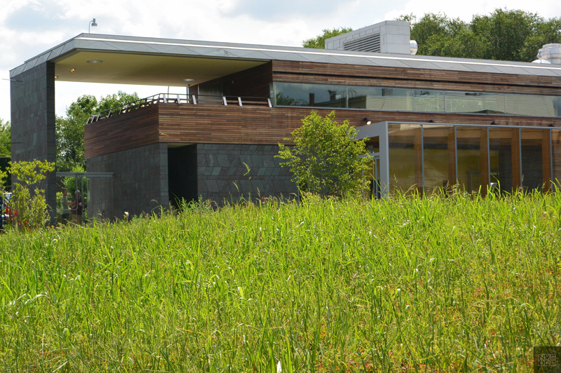 A view of the back of the Weeksville Heritage Center.