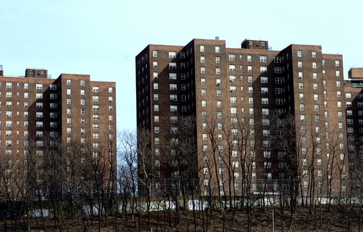 Group of brown NYC apartment buildings