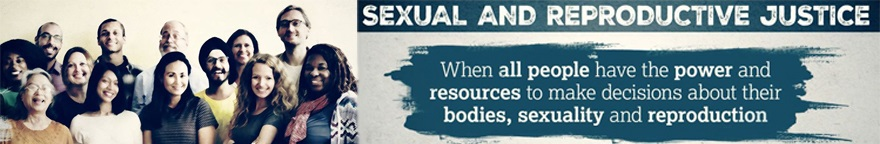 Sexual and reproductive justice banner image