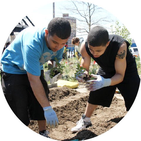 two boys with gloves setting plants in dirt