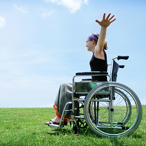 Disabilities, Access & Functional Needs