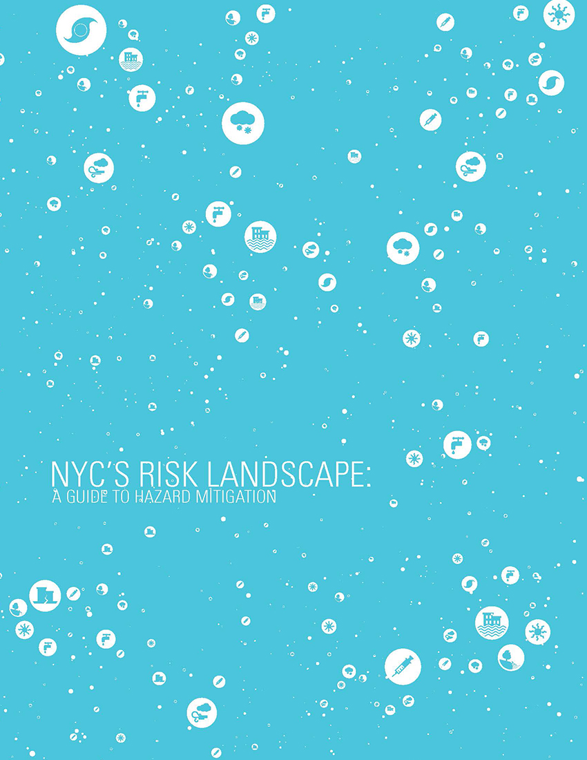 NYC Risk Landscape