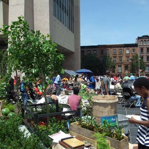 GreenThumb Summer Festival | Events | City of New York