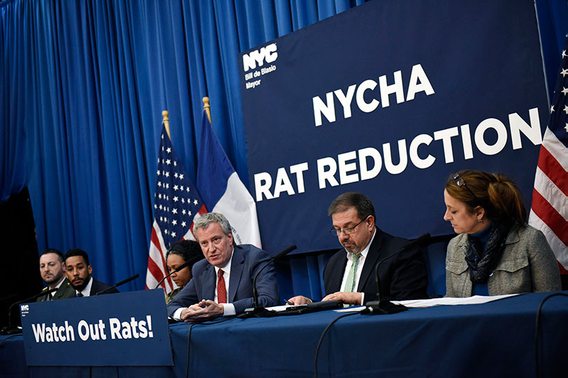 Mayor de Blasio Targets Rats for Extermination at 10 NYCHA Developments