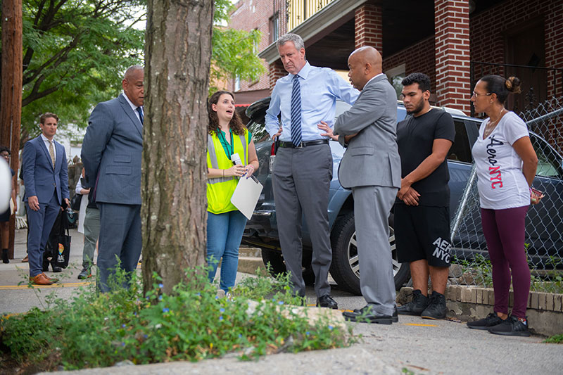 Mayor Announces City to Stop Issuing Violations on Homeowners for Damage Caused by Street Trees