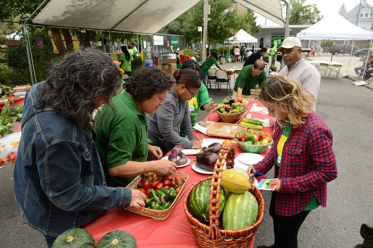 Green Thumb Harvest Fair