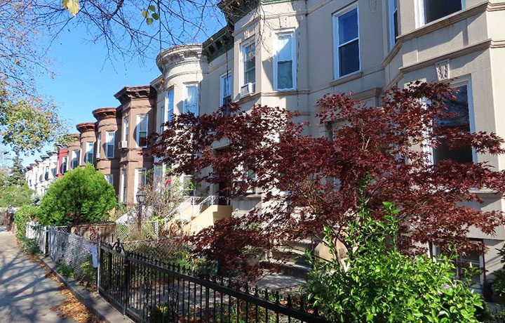Photo of Houses at East Flatbush