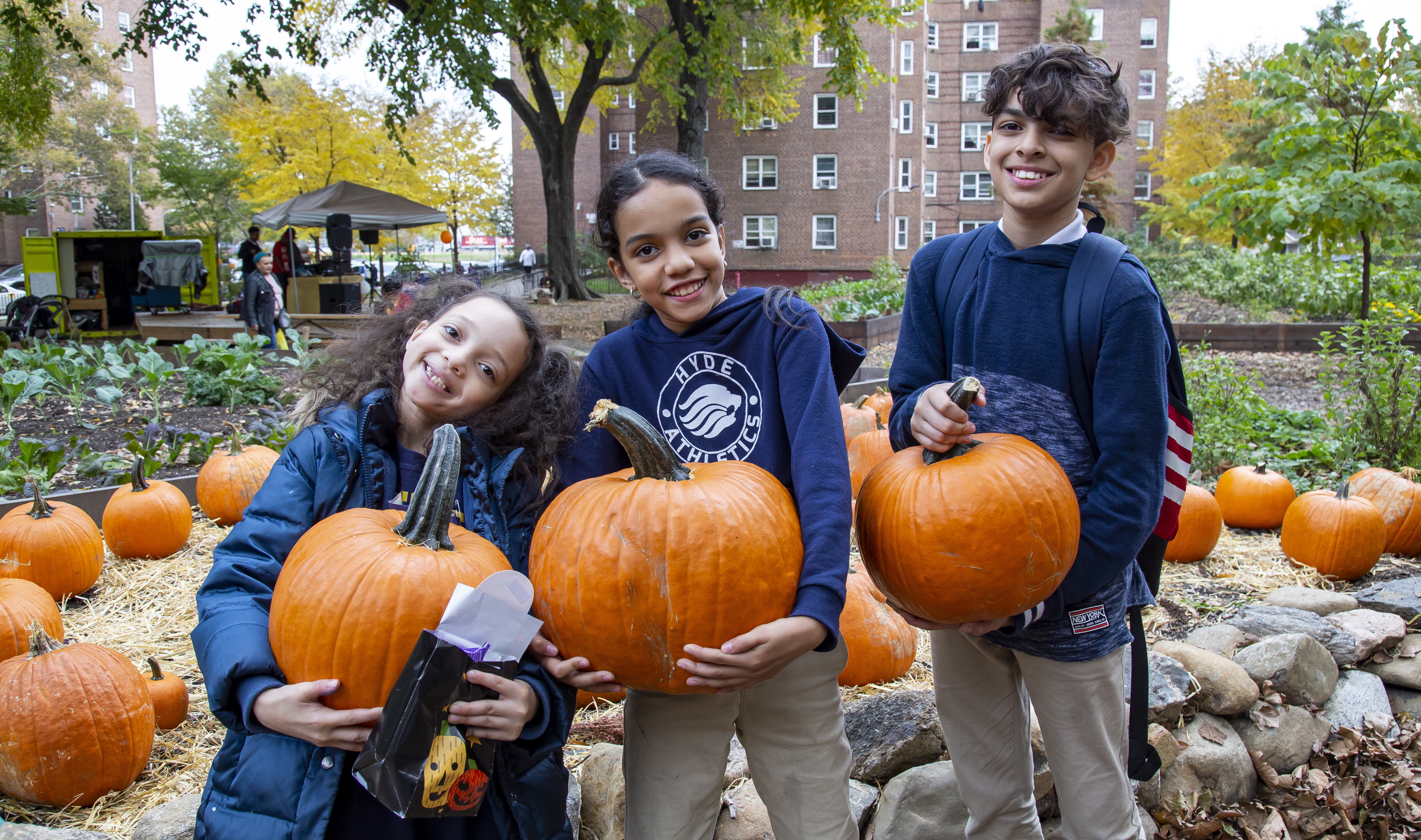 Harvest Festival at NYCHA