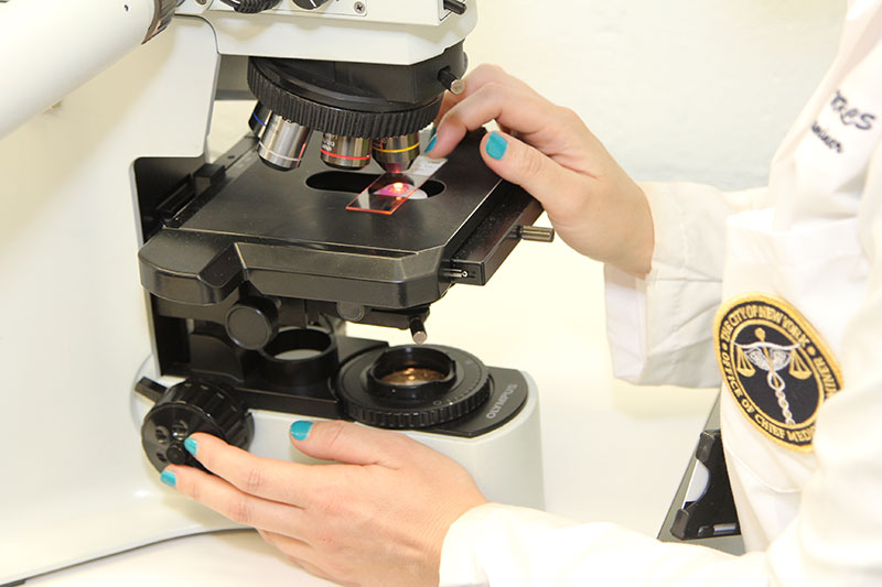 Medical examiner using a microscope