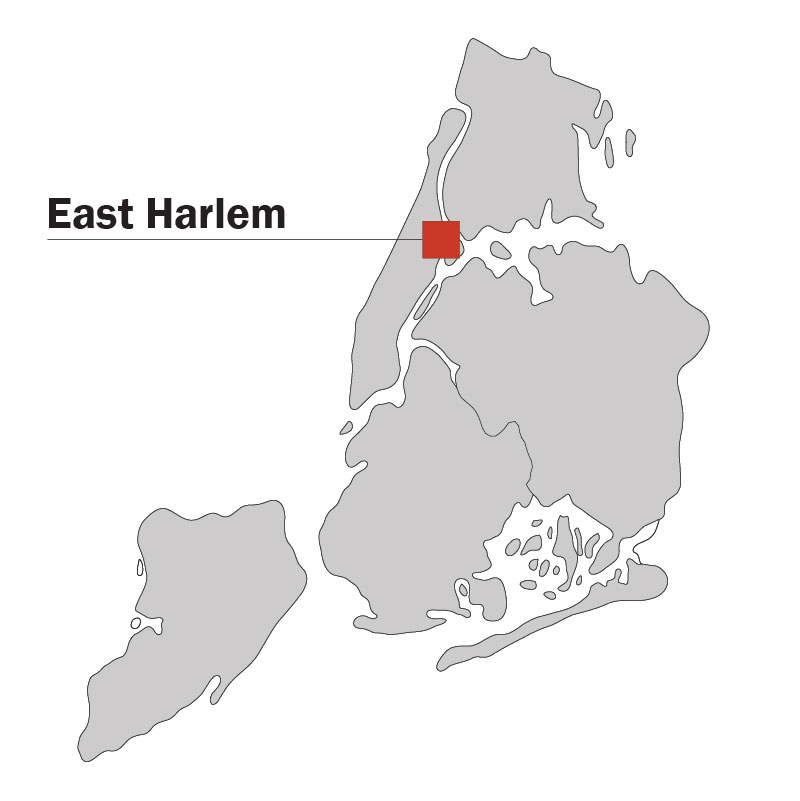 East Harlem Study area