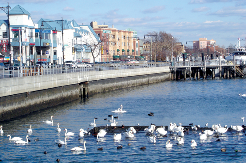 Zoning districts tools special purpose district for Sheepshead bay fishing