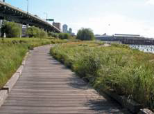 Example of meandering path in Hudson River Park, Manhattan