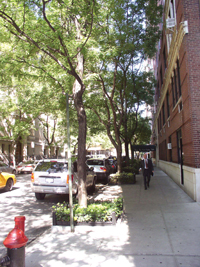 High density streetscape in the West Village
