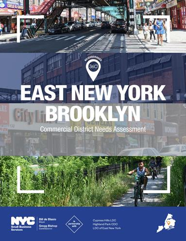 East New York Commercial District Needs Assessment